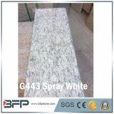 Pavers и бассеин гранита брызга G443 белые естественные справляясь