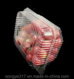 Rectángulo transparente disponible del empaquetado plástico de la fruta