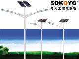 réverbère solaire de la CE approuvée de 60W LED avec 8m Polonais