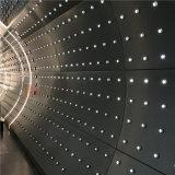 Comitati di alluminio perforati di figura curva per la decorazione della parete interna