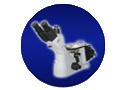 Trinocularの逆にされたMetallographic顕微鏡SD300m