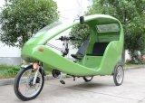 Motocicleta elétrica de três rodas (DCQ500DQZK)