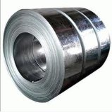 310S Galvanized Steel Coil/Sheet с Best Prices для You