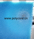 Waterproof Light Weight Blue Polycarbonate Honeycomb