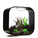 China Supplier Square acrílico Aquarium Fish Tank com luz LED