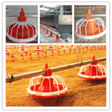 Poultry automático Equipment Feeders e Drinkers para Chicken House