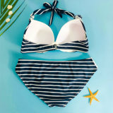 Swimwear sexy del bikini due parti di bagno dello Swimwear del vestito