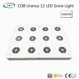 COB Uranus 12 LED Grow Light voor Indoor Plants & Flowers