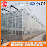 2017년 중국 Prefabricated 다중 경간 Venlo PC 장 온실