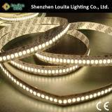 Indicatore luminoso di striscia di SMD 3528 240LED/M LED