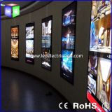 Clothing Industry를 가진 LED Apparel Merchandising를 위한 Windows Display