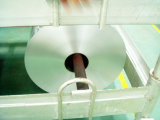 Bakterium an wachsendem Aluminiumfolie-Behälter verhindern