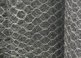 Reforcement Geomat avec le treillis métallique de Gavalnized