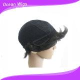 브라질 Virgin 머리 간결 사람의 모발 가발 Virgin 사람의 모발 가발 자연적인 색깔 엉킴 없음 Quercy 흘리는 머리 없음