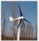 300W het van-netSysteem van de Turbine van de wind met Controlemechanisme, Omschakelaar en Batterij