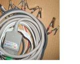 Machine électronique ECG EKG à trois voies