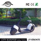 Nueva 1000W vespa eléctrica desarrollada 2016 de China (JY-ES005)
