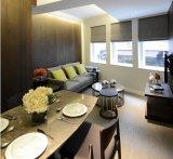 Мебель дома комнаты дома самомоднейшей конструкции живущий (HF-05)