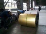 CGCC Dx51d PPGL ha preverniciato la lamiera acciaio di Aluzinc/del galvalume/bobina (anti-barretta-stampare)