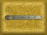 熱いOEMの高品質は鍛造材のドアクローザーの鍛造材を停止する