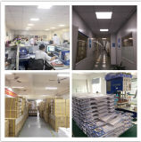 "LED Panel Light (Multifunction Installation를 가진 4 ' *2 "" 50W) 5100lm/W Dimmable"