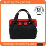 Nuova signora Handbags (BDM071) dell'unità di elaborazione del professionista di modo