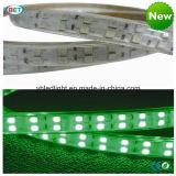 2중 선 RGB LED 지구 빛 120LEDs/M 온라인으로 소매점