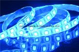 Éclairage flexible sûr et bleu de tension de C.C 12V de DEL de bande
