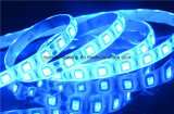 DC 12V 전압 안전하고 파란 유연한 LED 지구 점화