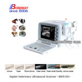 Handheld Veterinary блока развертки ультразвука оборудует 4D Doppler