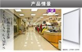Heißes Licht des Verkaufs-Doppelt-Farben-Quadrat-Panel-Light/LED