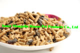 Arena natural de los productos del gato de madera de pino