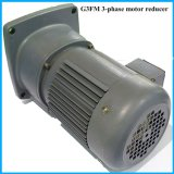 Bride Gearedmotor de moteur du CEI G3