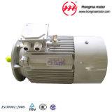 (EFF2) чугун серии 1HMI-Ie1 расквартировывая трехфазный электрический двигатель