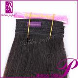 Armure brésilienne de cheveux d'Ombre de tonalité en bloc des marchandises trois humide et onduleuse