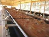 Резиновый конвейерная с отверстиями и зажимами