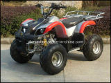 Mini Quad ATV 110cc