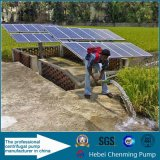água solar submergível da C.C. de 100m que cultiva a bomba da lagoa