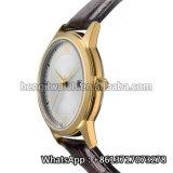 El nuevo reloj del cuarzo del estilo 2016, forma el reloj del acero inoxidable para Hl-Bg-111