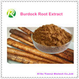 Extrato natural Arctiin da raiz do Burdock de 100%