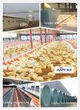 Granja avícola prefabricada de la estructura de acero con el equipo automático de las aves de corral