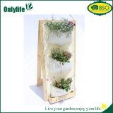 Hangende Planter van de Tuin van Onlylife de Milieuvriendelijke Verticale