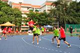 Facile installer et zéro mettent à jour la cour de handball pour d'intérieur et extérieur