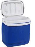 o Portable 25L plástico isola a caixa do refrigerador do gelo