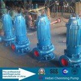 Vertikale Roheisen-versenkbare Pumpe für Abwasserbehandlung-Industrie