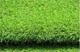 Erba artificiale di alta qualità della Cina