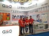 Regulador solar directo producido de la fábrica para el sistema eléctrico solar