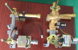 Tipo caldaia istante del geyser del riscaldatore del condotto di scarico/gas di acqua del gas/gas (SZ-RS-65)