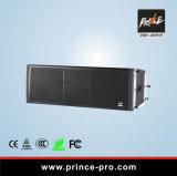 Verdoppeln eine 12 Zoll-leistungsfähige Zeile Reihen-Lautsprecher für kleines und mittelgrosses im FreienPerformanc
