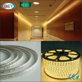 220V/110V 3528 60LED/M 고전압 LED 지구 빛 7-8lm